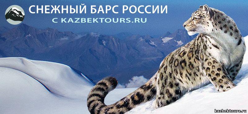 снежный барс России